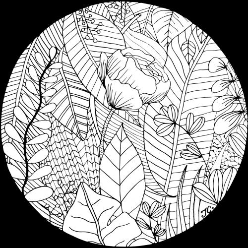 mardi-coloriage-4-A4-illustration-tiphanie-canada