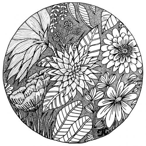 mardi-coloriage-5-A4-illustration-tiphanie-canada